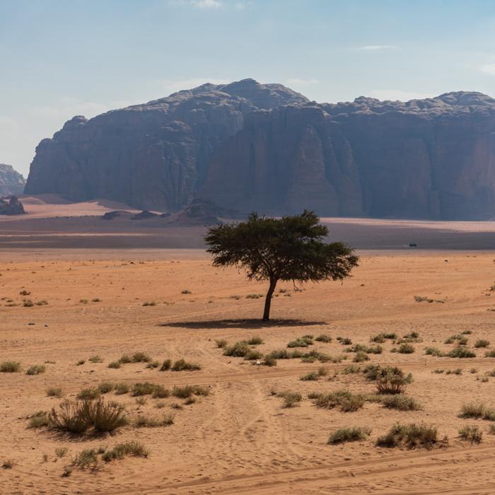 Chasing World Heritage: #151 (Wadi Rum)